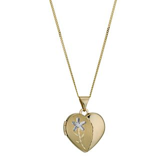 9ct two tone matt & polished heart locket - Product number 1000195