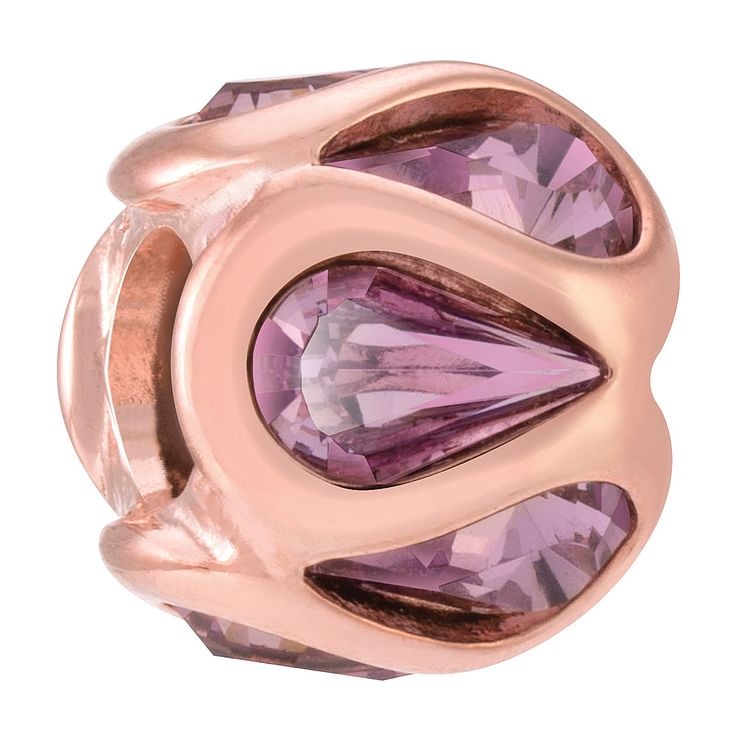 Chamilia Embrace rose gold-plated & amethyst crystal charm - Product number 3823067