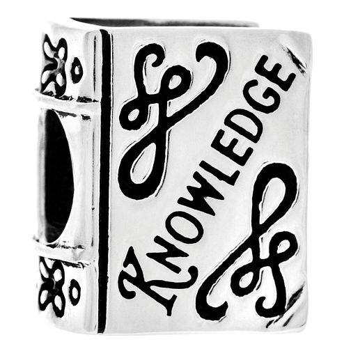 Chamilia Sterling Silver & Swarovski Knowledge Is Power Bead - Product number 5056799