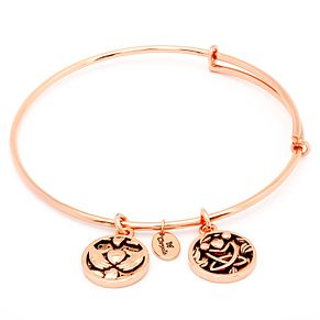 Chrysalis Rose Gold plated Friendship Bangle - Product number 5282039