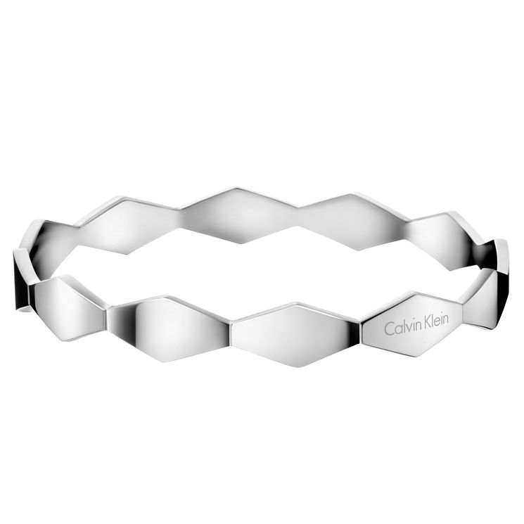 Calvin Klein Snake Stainless Steel Bangle - Product number 6253067