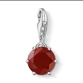 Thomas Sabo January Birthstone Charm - Product number 8788154