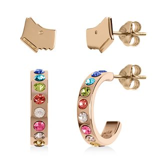 Radley Gold Tone Dog Stud & Stone Hoop Earrings Set - Product number 1149318