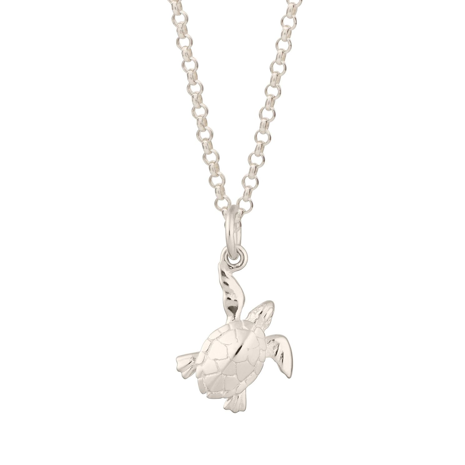 Lily Charmed Sterling Silver Turtle Pendant - Product number 4059476