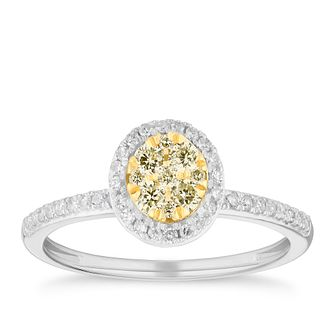 18ct Two Tone Gold 1/3ct Yellow Diamond Round Cluster Ring - Product number 4123514