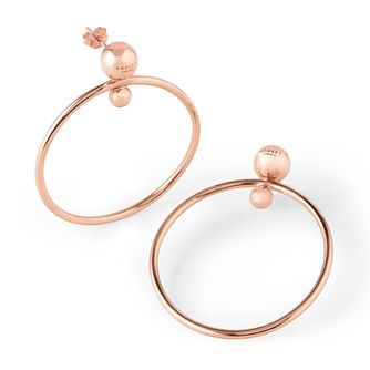 Radley London Rose Gold Plated Large Hoop Earrings - Product number 4180461