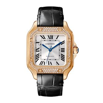 Cartier Santos de Cartier Ladies' Interchangable Strap Watch - Product number 4279352