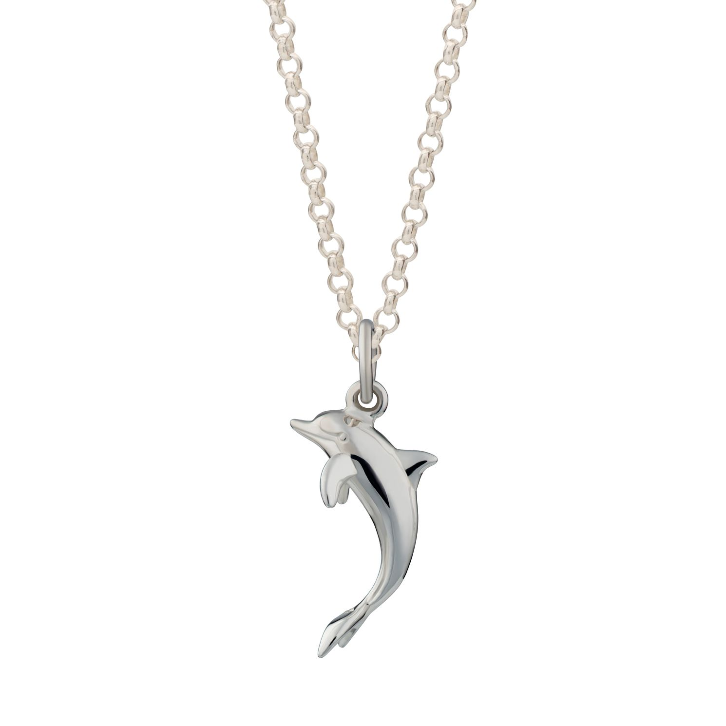 Lily Charmed Silver Live As You Dream Dolphin Necklace - Product number 4546865