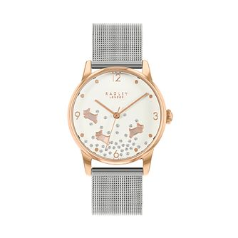 Radley Crystal Ladies' Silver Tone Mesh Bracelet Watch - Product number 5087058