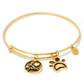 Chrysalis Yellow Gold plated I Love my Dog Bangle - Product number 5282055