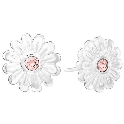 Chamila Sterling Silver Zinnia  Rose Stud Earrings - Product number 5853672