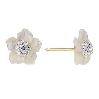 Evoke Mother of Pearl Crystal Look Studs - Product number 8882622