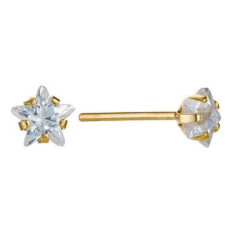 9ct Yellow Gold Cubic Zirconia Star 4mm Stud Earrings - Product number 9082328