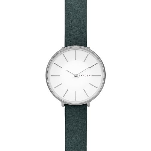 Skagen Karolina Ladies' Stainless Steel Strap Watch - Product number 9391223