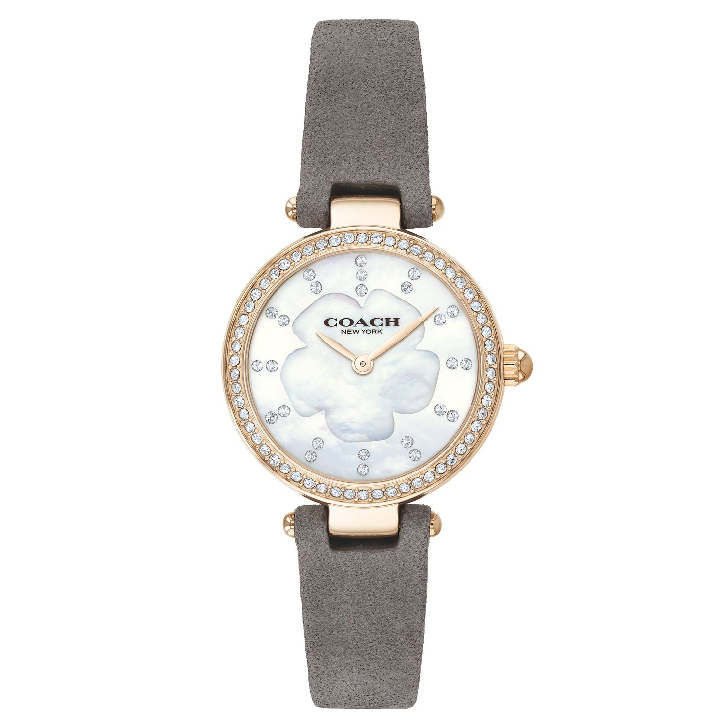 Coach Park Ladies' Yellow Gold Plated Strap Watch - Product number 9410309