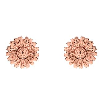 Olivia Burton Daisy Ladies' Rose Gold Plated Stud Earrings - Product number 9457186